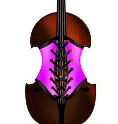 Fiddle and corset vector