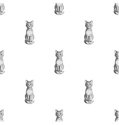 gray catanimals single icon in monochrome style vector image vector image