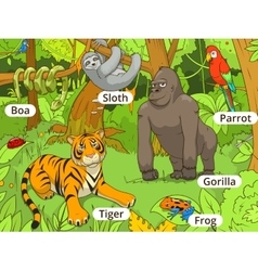 Jungle animals cartoon vector
