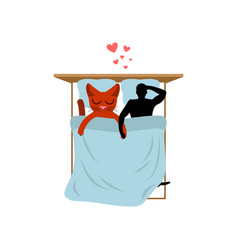 cat lover in bed my kitty lovers in bedroom pet vector image vector image