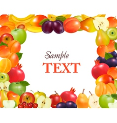 Frame made from fruit vector