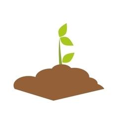 Plant icon nature design graphic vector