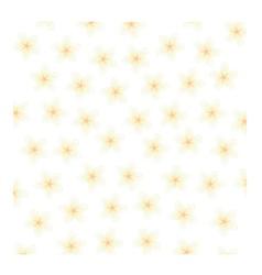 Plumeria background vector