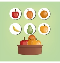 Assorted healthy food icons image vector