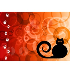 magic cat vector image