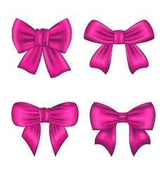 Collection pink silk gift bows isolated vector