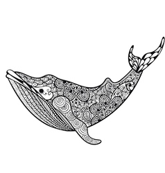 Zentangle stylized Sea Whale Hand Drawn isolated vector image