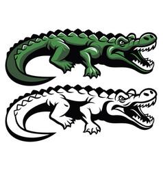 crocodile mascot vector image vector image