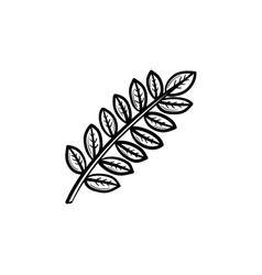 leaves on branch hand drawn sketch icon vector image vector image