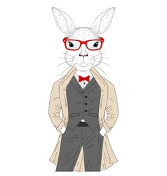Cute rabbit boy in elegant suit with coat glasses vector