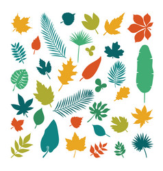 Silhouettes of leaves collection of leaves in vector