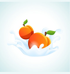 Apricots in milk splash vector
