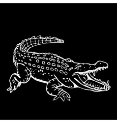 Hand-drawn pencil graphics crocodile alligator vector