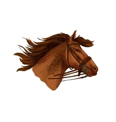 Horse in bridle running mustang head vector image