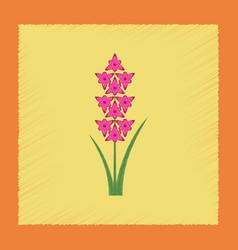 flat shading style gladiolus vector image