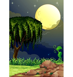 A view of the forest in the middle of the night vector image