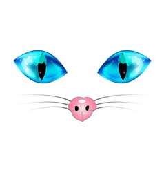 Cat blue eyes and nose vector