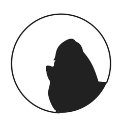 Silhouette of a dog head yorkshire terrier vector