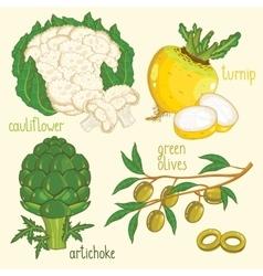 Vegetable mix vector