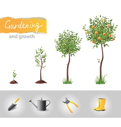 Gardening and growth vector