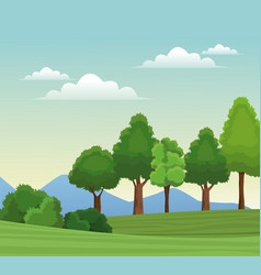tree forest natural sky meadow mountain vector image
