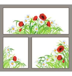 Set summer flower poppy daisy isolated on white vector image