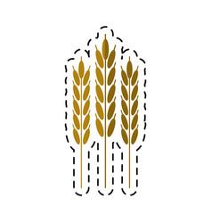 cartoon harvesting wheat ears vector image