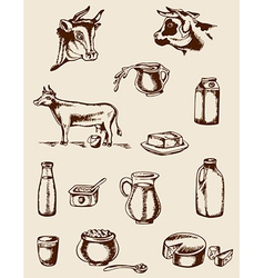 Dairy products and cow vector image vector image