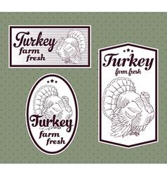 Turkey meat labels set vector image
