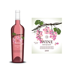 Conceptual transparent label for rose wine vector