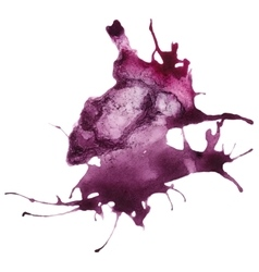 Beautiful traced watercolor splatter vector