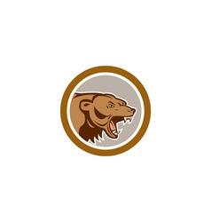 Angry grizzly bear head circle cartoon vector