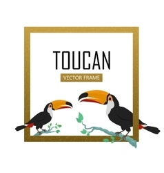 Toucan Bird Flat Design vector image