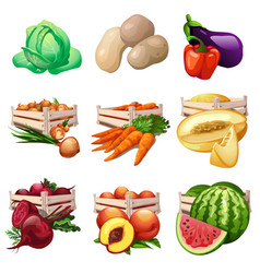 vegetables and fruits harvest in wooden boxes vector image vector image