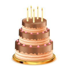 Chocolate cake with candles vector image