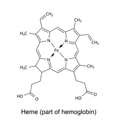 Structural chemical formula of heme molecule vector