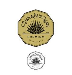 Logo tequila sgold label blue agave premium vector
