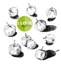 Hand drawn Apples set vector image