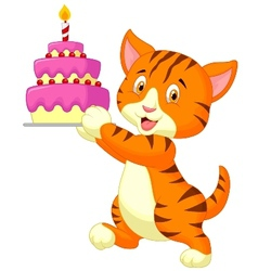 Cat cartoon with birthday cake vector