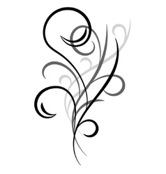 Doodle hand drawn ornament vector image