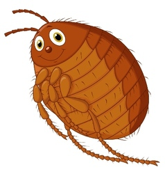 Flea cartoon vector image vector image