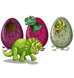 Eggs and many dinosaurs vector