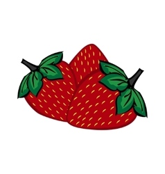 Hand painted strawberry berries close up vector