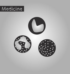 black and white style icon of leukocyte vector image