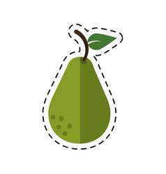 Cartoon avocado health diet icon vector