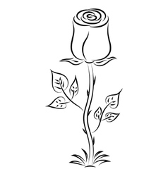 Doodle hand drawn rose vector
