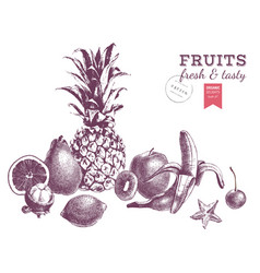 Hand drawn juicy fruits monochrome border vector