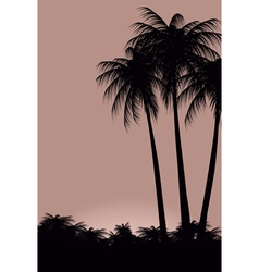 Palm trees against the sky vector