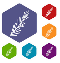 Rosemary spice icons set hexagon vector