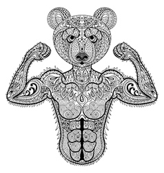 Zentangle stylized strong bear hand drawn sport vector